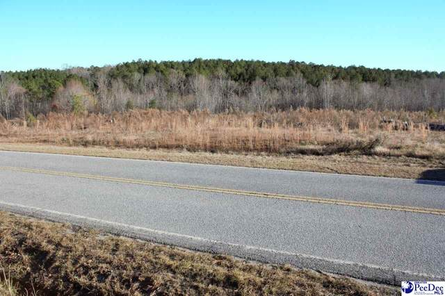 1475 Highway 268, Mount Croghan, SC 29727 (MLS #20200505) :: RE/MAX Professionals