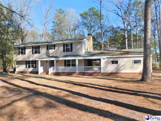 124 Alabama Drive, Darlington, SC 29532 (MLS #20200621) :: RE/MAX Professionals
