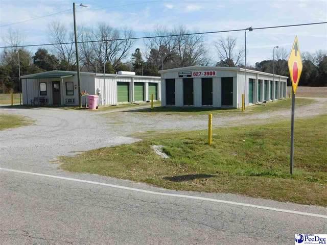 601 Richard Temple Boulevard, Lake View, SC 29563 (MLS #20200756) :: RE/MAX Professionals