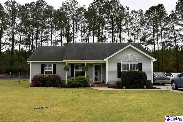 1026 Aunt Prissey Court, Florence, SC 29505 (MLS #20201027) :: RE/MAX Professionals