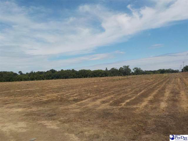 TBD Hickory Grove Road, Bennettsville, SC 29512 (MLS #20201535) :: Coldwell Banker McMillan and Associates