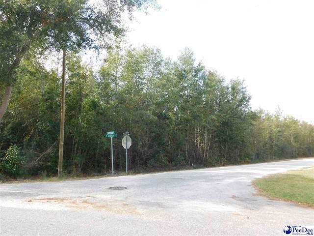 TBD S Horse Shoe Drive, Lake View, SC 29563 (MLS #20201558) :: Coldwell Banker McMillan and Associates