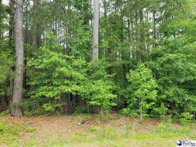 Sloane Lane - Lot #16, Cheraw, SC 29520 (MLS #20201641) :: The Latimore Group