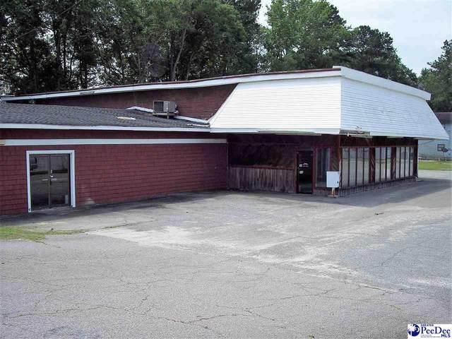 101 Radford Boulevard, Dillon, SC 29536 (MLS #20201800) :: RE/MAX Professionals
