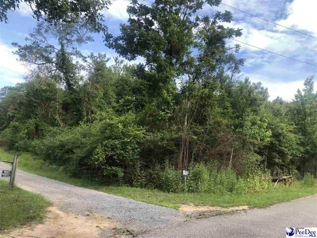 TBD Hillcrest Road, Hartsville, SC 29550 (MLS #20202032) :: RE/MAX Professionals