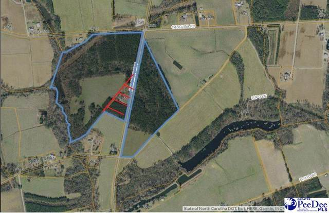 TBD Fair Bluff Highway, Green Sea, SC 29545 (MLS #20202112) :: Crosson and Co