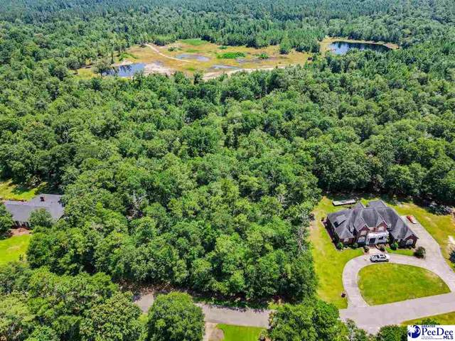 20009 TBD Byrnes Blvd, Florence, SC 29506 (MLS #20202305) :: Coldwell Banker McMillan and Associates