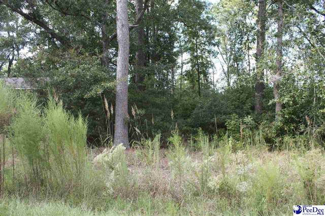 243 Byrnes Circle, Johnsonville, SC 29555 (MLS #20202489) :: Crosson and Co