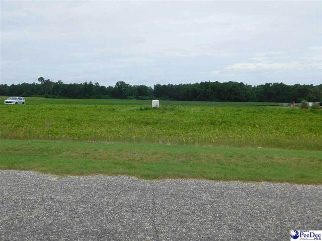 TBD Grain Bin Road, Lake View, SC 29563 (MLS #20202549) :: Coldwell Banker McMillan and Associates