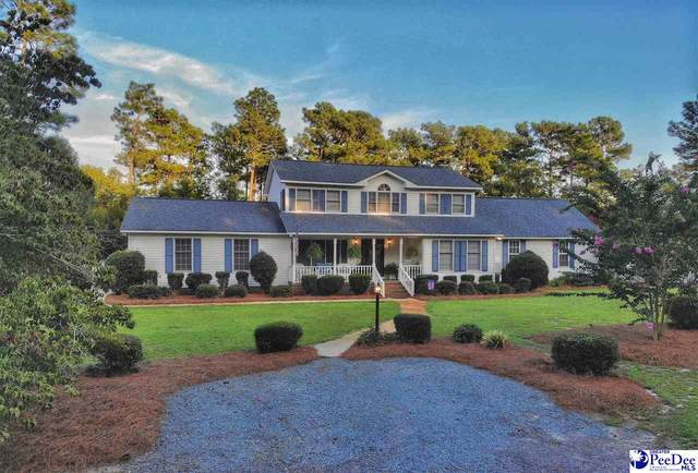 2310 Spring Street, Hamer, SC 29547 (MLS #20202668) :: The Latimore Group