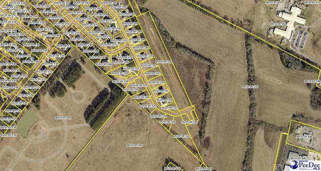 2466 Parson Gate_Lot 14, Florence, SC 29501 (MLS #20202709) :: Coldwell Banker McMillan and Associates