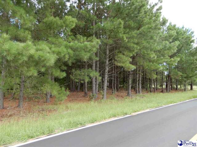 Lot 6 Maude Road, Marion, SC 29571 (MLS #20202854) :: Coldwell Banker McMillan and Associates