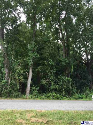 0000 Lakeshore Drive, Bennettsville, SC 29512 (MLS #20202922) :: Coldwell Banker McMillan and Associates