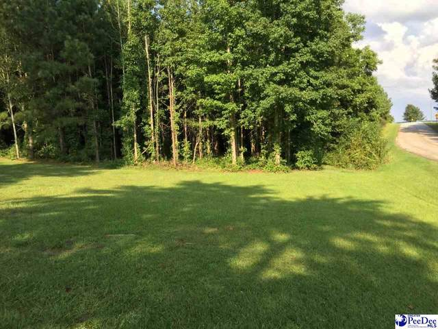 543 Wexford St, Ruby, SC 29741 (MLS #20202927) :: Coldwell Banker McMillan and Associates