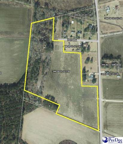 TBD Hicks Road, Turbeville, SC 29162 (MLS #20202957) :: Coldwell Banker McMillan and Associates