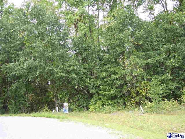 Rosewood Drive, Dillon, SC 29536 (MLS #20202982) :: Coldwell Banker McMillan and Associates