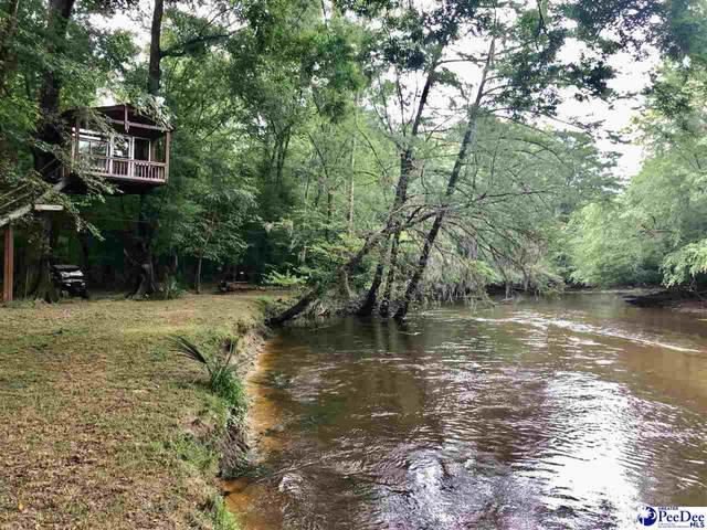 107 Acres Creek Rd, Timmonsville, SC 29161 (MLS #20203038) :: Coldwell Banker McMillan and Associates