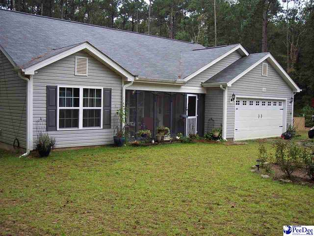 378 Horace Road, Dillon, SC 29536 (MLS #20203119) :: Coldwell Banker McMillan and Associates