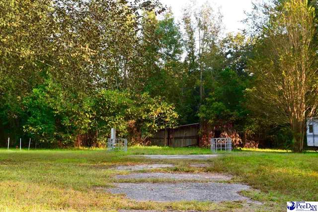 111 Lands End Dr., Darlington, SC 29532 (MLS #20203214) :: Coldwell Banker McMillan and Associates