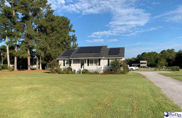 221 Wire Road, Darlington, SC 29532 (MLS #20203377) :: Coldwell Banker McMillan and Associates