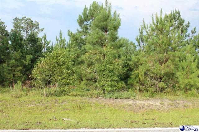 .17 ac Plantation Rd., Lake City, SC 29560 (MLS #20203412) :: Crosson and Co