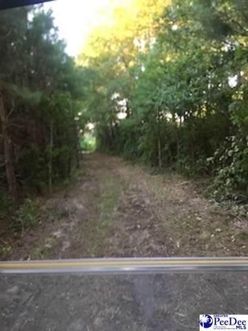 667 Pecan Grove Rd, Hartsville, SC 29550 (MLS #20203501) :: Crosson and Co