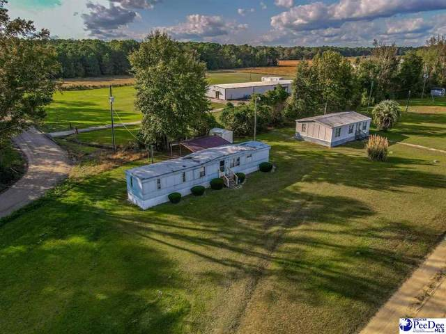 3624 Bass Lane, Timmonsville, SC 29161 (MLS #20203521) :: Crosson and Co