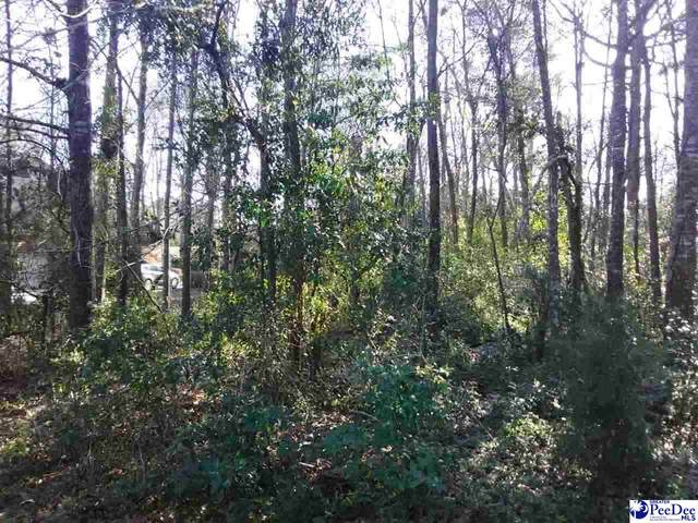 TBD Ruby Rd, Hartsville, SC 29550 (MLS #20203526) :: Coldwell Banker McMillan and Associates