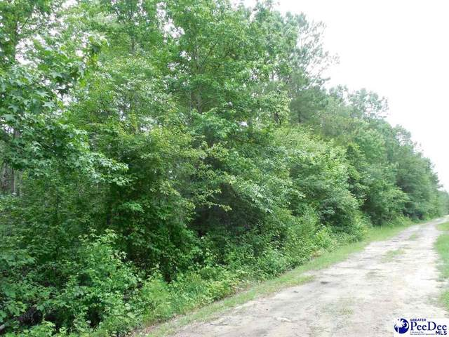 TBD Shuler Road (Lot 040), Florence, SC 29506 (MLS #20203630) :: Crosson and Co