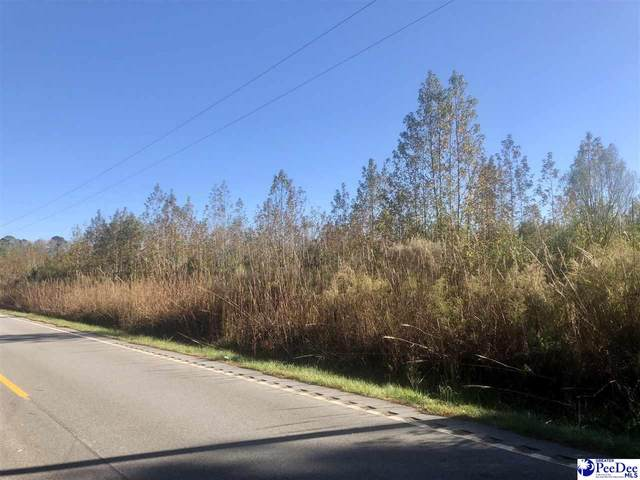 TBD Coxe Road East, Bennettsville, SC 29512 (MLS #20203656) :: Crosson and Co