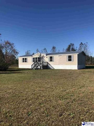 401 Briarcroft Drive, Hartsville, SC 29550 (MLS #20203716) :: Crosson and Co