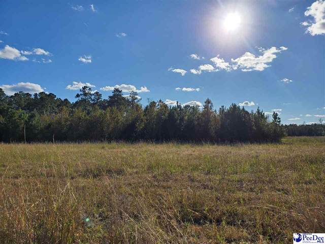 1540 Cox Rd, Pamplico, SC 29583 (MLS #20203731) :: Crosson and Co