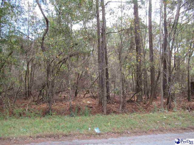 Wallace Street, Lake City, SC 29560 (MLS #20203796) :: Crosson and Co