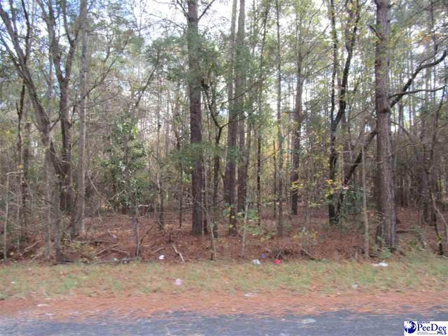Wallace St, Lake City, SC 29560 (MLS #20203797) :: Crosson and Co