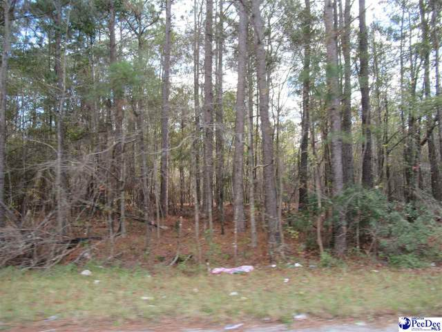 Wallace Street, Lake City, SC 29560 (MLS #20203798) :: Crosson and Co