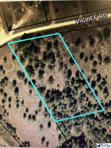TBD Vi Cliff Rd., Darlington, SC 29532 (MLS #20203805) :: Crosson and Co