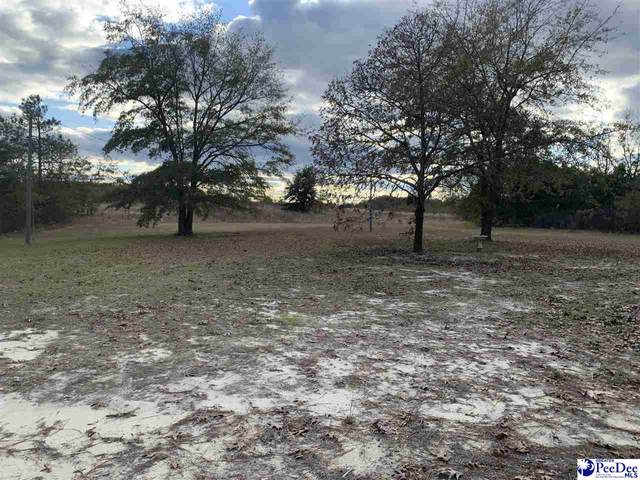 25674 Hwy 151, Mcbee, SC 29101 (MLS #20203817) :: Crosson and Co