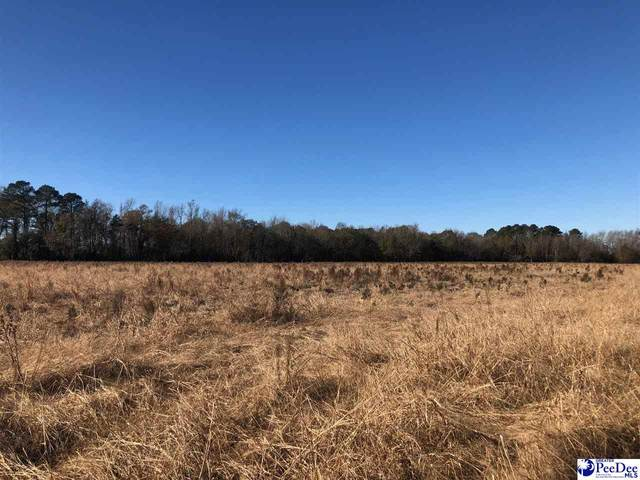 TBD New Hopewell Rd. Lot 3, Darlington, SC 29540 (MLS #20203821) :: Crosson and Co