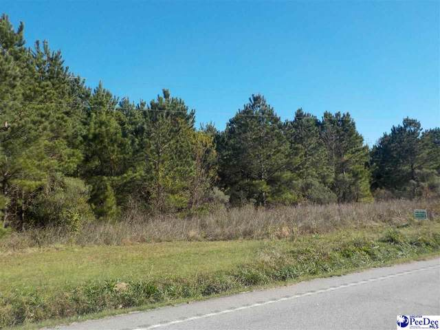 TBD Highway 9 East, Clio, SC 29525 (MLS #20203833) :: Crosson and Co