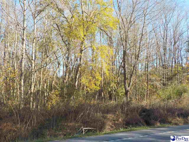 TBD Highway 9 East, Clio, SC 29525 (MLS #20203834) :: Crosson and Co