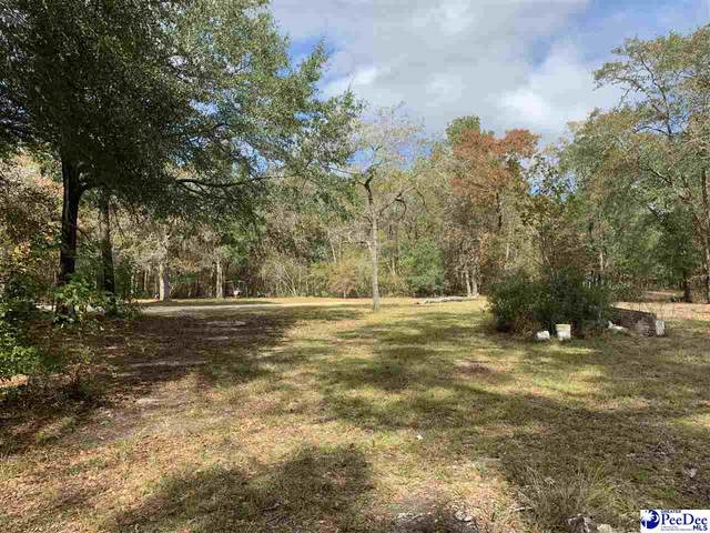 415 S River Pines Road, Mullins, SC 29574 (MLS #20203963) :: Coldwell Banker McMillan and Associates