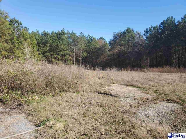 Brickyard Rd, Bennettsville, SC 29512 (MLS #20210007) :: Crosson and Co