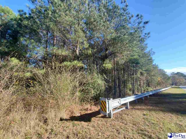 Brickyard Rd., Bennettsville, SC 29512 (MLS #20210008) :: Crosson and Co