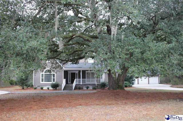 9 Browns Ferry Rd, Kingstree, SC 29556 (MLS #20210155) :: Crosson and Co