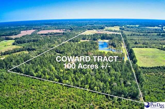 TBD Union School Rd., Coward, SC 29530 (MLS #20210166) :: The Latimore Group
