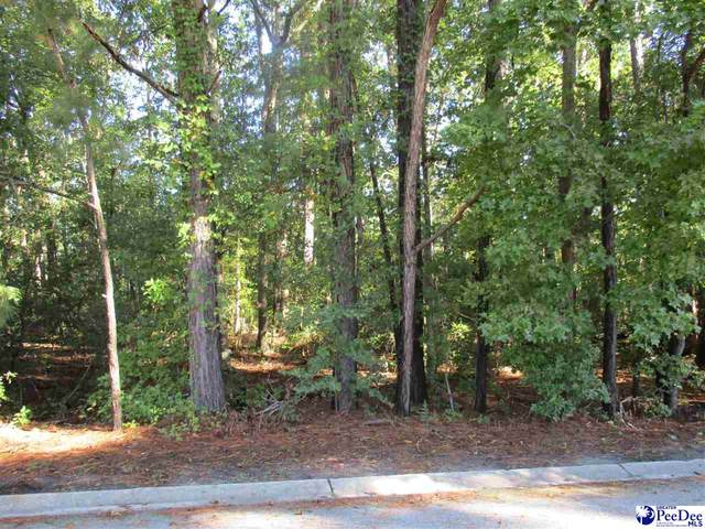 807 Lancelot Dr. ( Lot), Florence, SC 29505 (MLS #20210188) :: Crosson and Co
