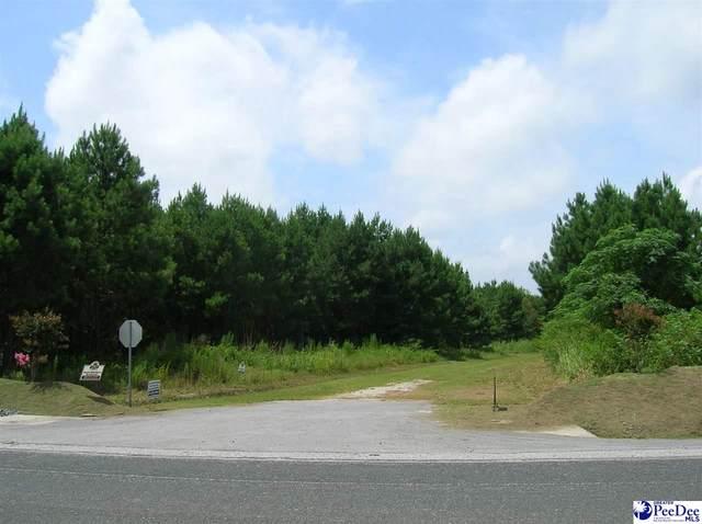 Lot 6 Drake's Nest Lane, Darlington, SC 29532 (MLS #20210205) :: The Latimore Group