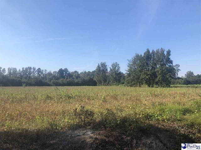 TBD Bethel Rd., Scanton, SC 29591 (MLS #20210270) :: Crosson and Co