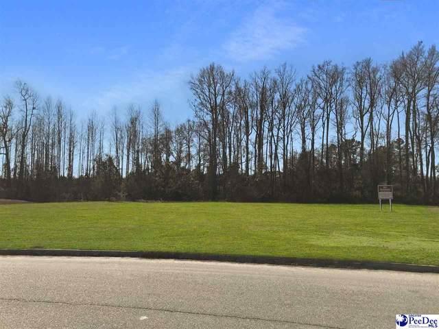 TBD Enterprise Road, Dillon, SC 29536 (MLS #20210341) :: Crosson and Co