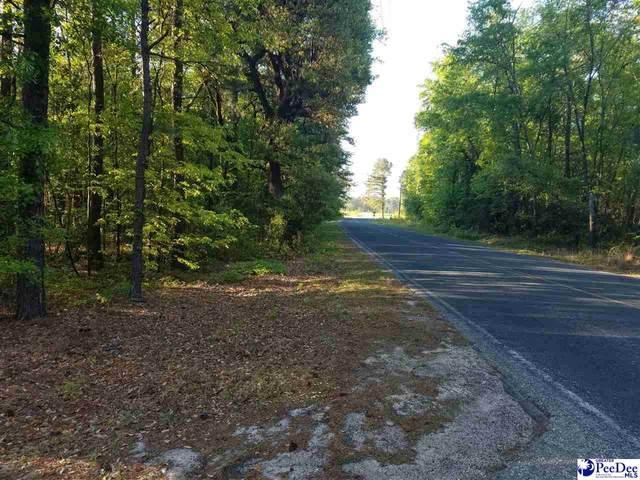 TBD Tatum Highway, Clio, SC 29525 (MLS #20210446) :: Crosson and Co